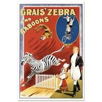 Grais Zebra & Baboons